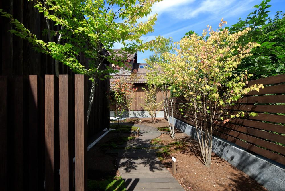 玄関につづく小道の庭 -  -  -